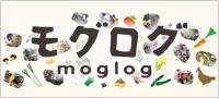 モグログ moglog 食と農の杜づくり課のブログ