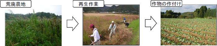 耕作放棄地再生フロー